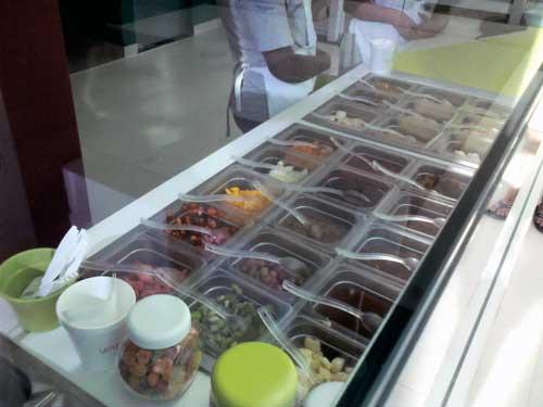 Yoggomix Frozen Yogurt - Balcão com Condimentos
