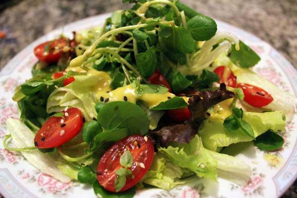 Cozinha Show: Especial de Natal - Salada Verde ao Molho de LaranjIPA
